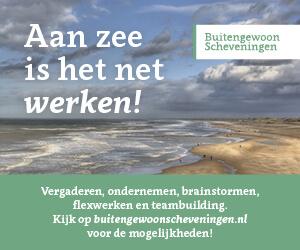 Campagne Stichting Marketing Scheveningen - Banner Aan zee is het net werken - Buitengewoon Scheveningen