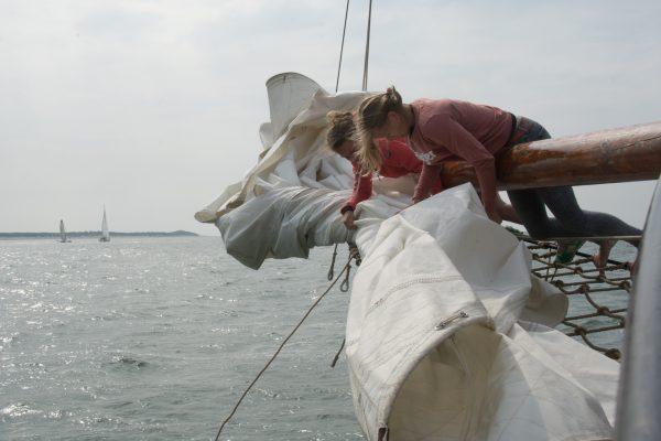 Ondernemen op het wad: Een Nomad Cruise om de hoek!